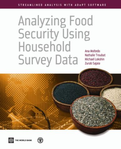 Analyzing Food Security Using Household Survey Data