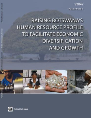 Botswana economic diversification strategy