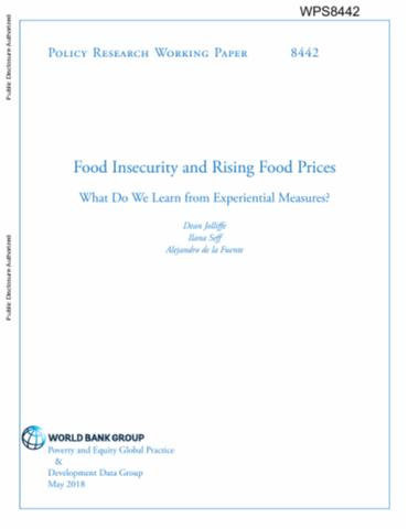 what is food insecurity pdf