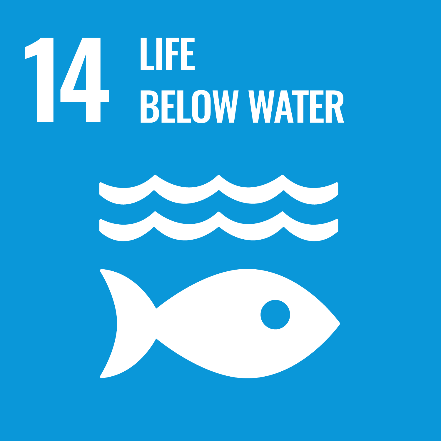 SDG 14: Life Below Water