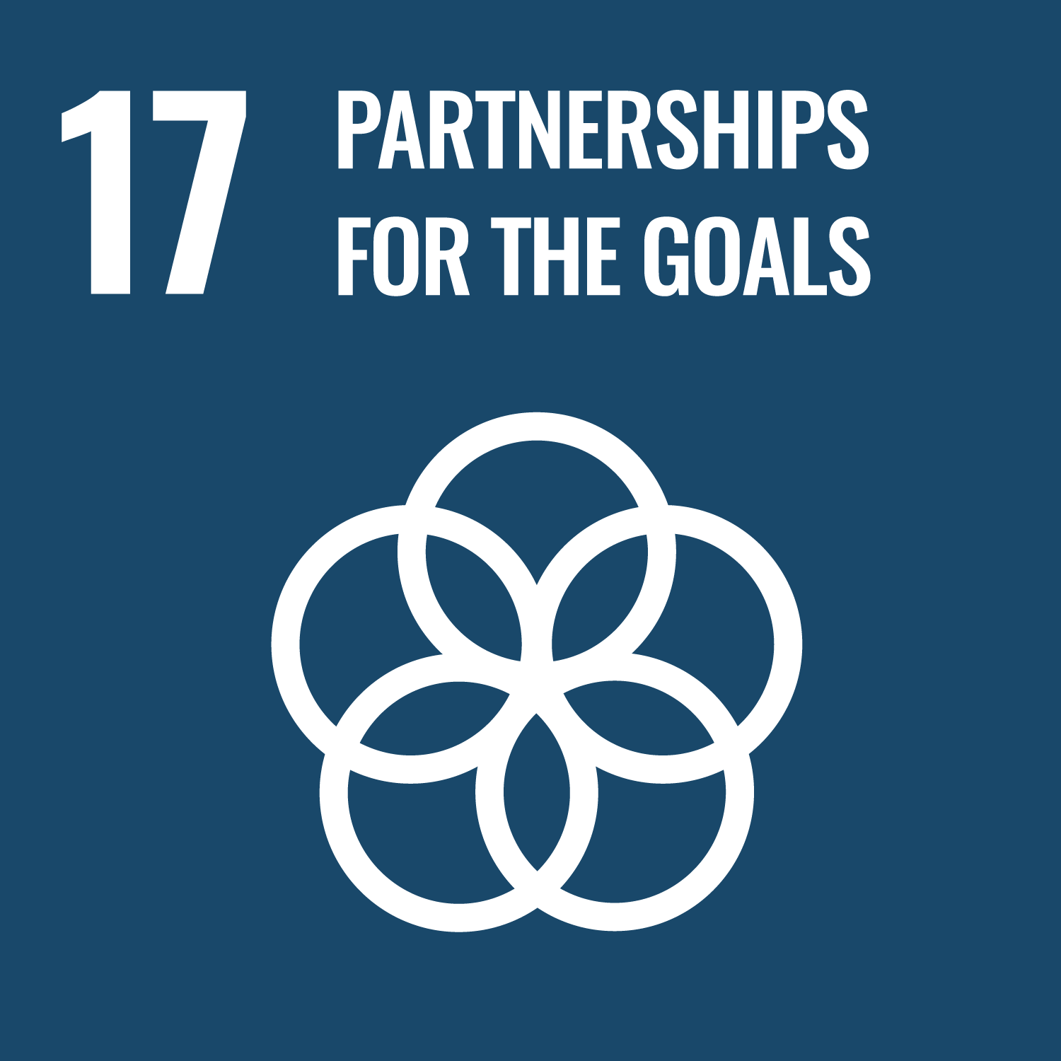 SDG 17: Partnerships for the Goals